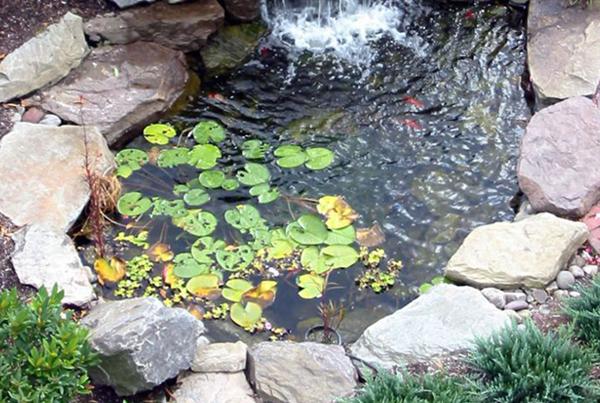bassin-slider-5